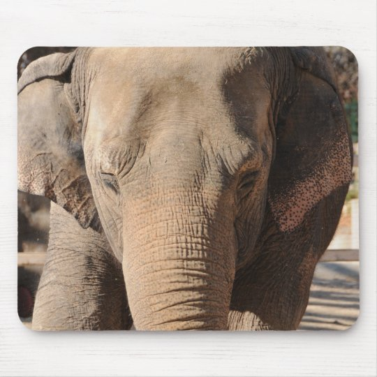 Asian Elephant Mouse Pad