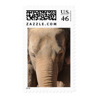 Asian Elephant Postage Stamps