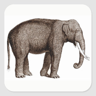 Asian Elephant Stickers