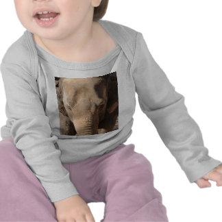 Asian Elephant T Shirts