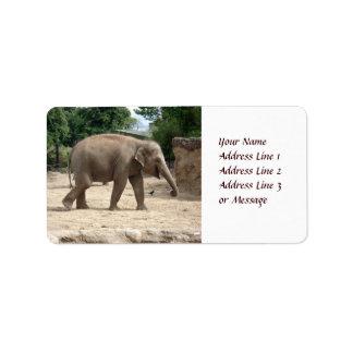 Asian Elephant Walking On Sand Adhesive Label Address Label