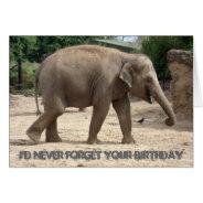 Asian Elephant Walking On Sand Birthday Card at Zazzle