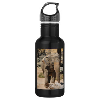 Asian Elephant Water Bottle