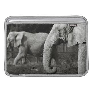"Asian Elephants 11"" MacBook Sleeve"