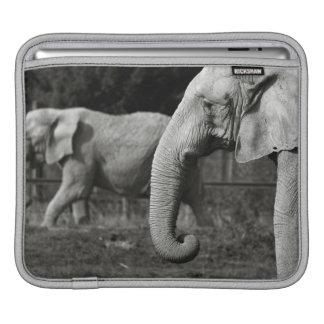 Asian Elephants iPad Sleeve