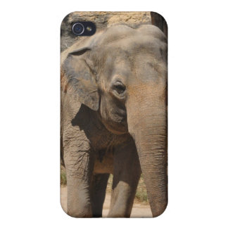 Asian Gray Elephant Cases For iPhone 4