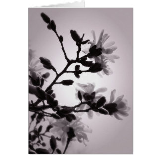 Asian Inspired Magnolia Stationery Note Card