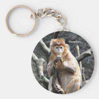 Asian Marmalade Monkey Basic Round Button Keychain
