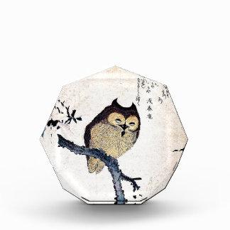 Asian Owl Award