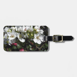 Asian Pear Blossoms Tag For Luggage