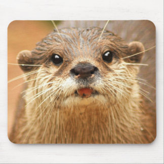 Asian Small Clawed Otter Mouse Pad