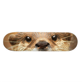 Asian Small Clawed Otter Custom Skate Board