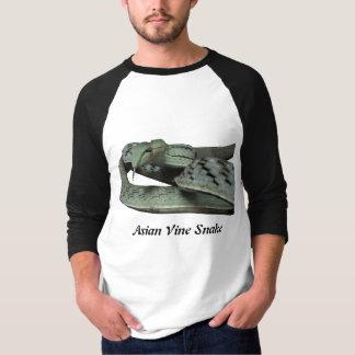 Asian Vine Snake Basic 3/4 Sleeve Raglan T-Shirt