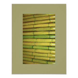 Asian Zen Green Bamboo Stalks Botanical Photo Invite