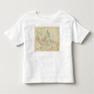 Asiatic Archipelago 3 Toddler T-shirt