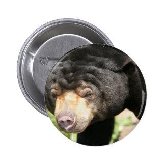 Asiatic Bear Button