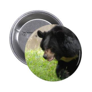 Asiatic Black Bear Button