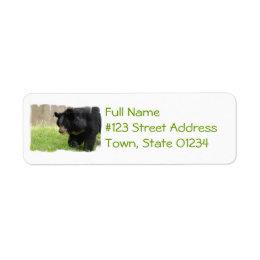 Asiatic Black Bear Mailing Label