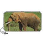 Asiatic Elephant  Portable Speakers