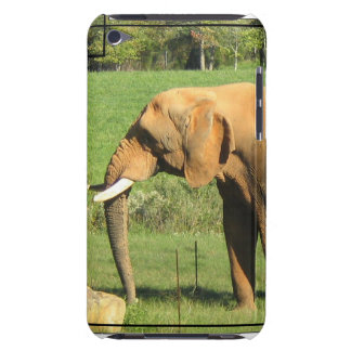 Asiatic Elephants iTouch Case Barely There iPod Cover
