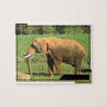 Asiatic Elephants Puzzle