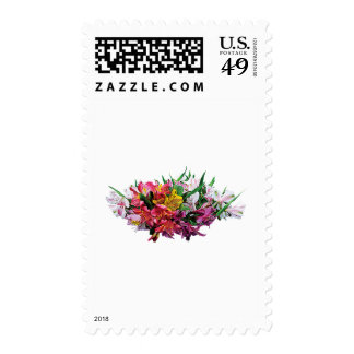 Asiatic Lilies Mixed Colors Postage