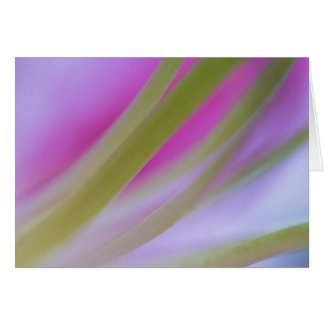 Asiatic Lily abstract Card