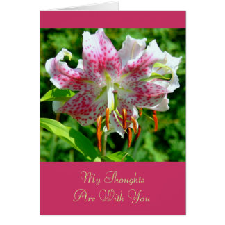ASIATIC LILY FLOWER CARD