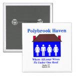 Asilo de Polybrook Pin