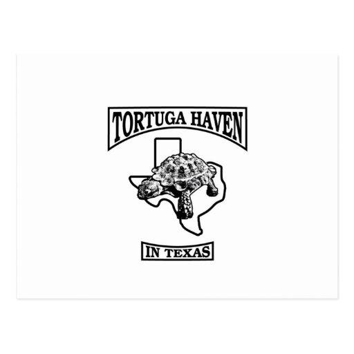 "Asilo de Tortuga en Tejas Stylin"" él para arriba Tarjeta Postal"