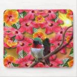 Asilo del colibrí alfombrilla de ratón