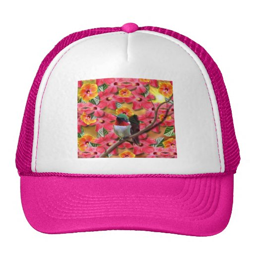 Asilo del colibrí gorros bordados