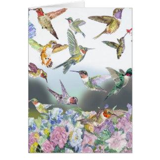 Asilo del colibrí tarjeton