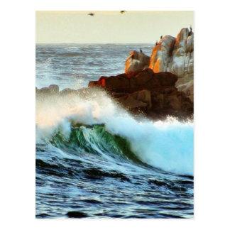 Asilomar vara oscuridad del océano de las ondas tarjetas postales