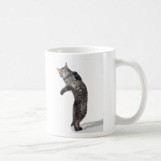 Asio dancing mug