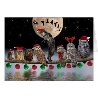 Asio dancing with owls on Christmas Eve Card