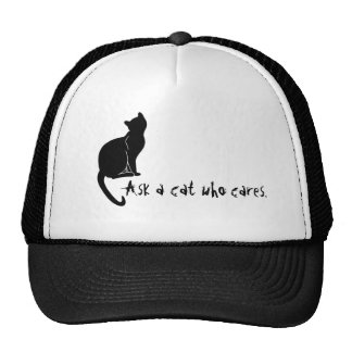 Ask a cat who cares hat