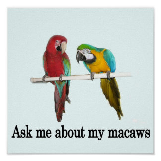 Ask Me About My Macaws Poster