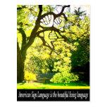 ASL-Handshaped Branches Postcard