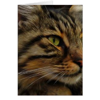 Aslan The Long Haired Tabby Cat Card