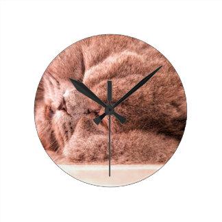 Asleep Persian Round Clock