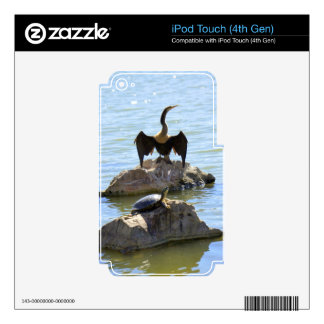 Asolear a Pals iPod Touch 4G Skins