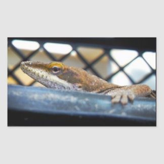 Asolear la foto verde del lagarto de Anole Rectangular Altavoz