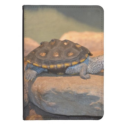 Asolear la tortuga funda de kindle touch