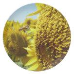 asolee la flor y la abeja, ヒマワリと蜂, placa plato para fiesta