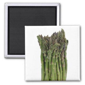 Asparagus Magnet
