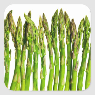 Asparagus on White - Customized Veggie Background Square Sticker