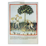 Asparagus Pickers, 13th century Greeting Cards