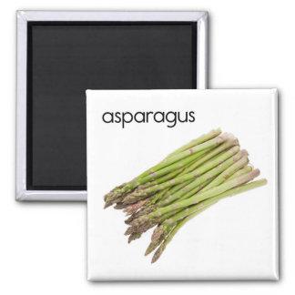 Asparagus Refrigerator Magnet