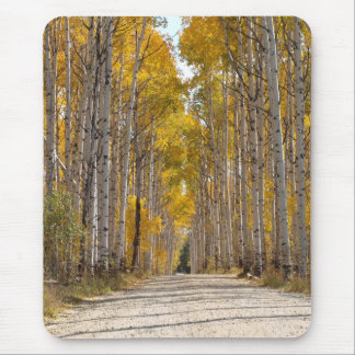 Aspen Alley In Autumn Mouse Pad